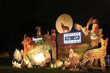 夜生活、薩伐旅與動物園
