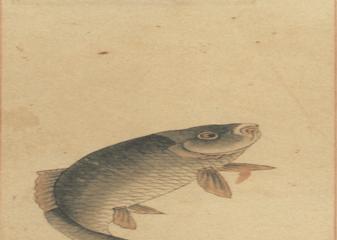 食物、味道與歷史:誰是「中國食物」的推動者?