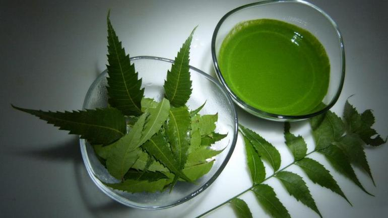 Beauty Benefits Of Dongoyaro (Neem)
