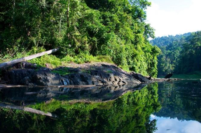 Lake Kenyir Resort & Spa _DSC2758