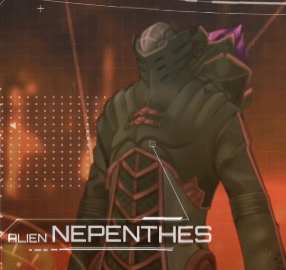 NEPRENTHES