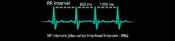 HRV_RRintervals