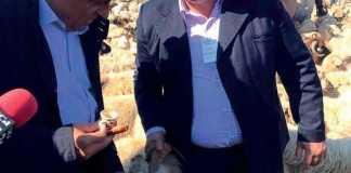 Ministrul Daea