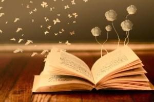dsa - 効率の良い人の読書術