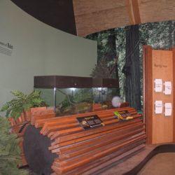 BC Wildlife Park 8