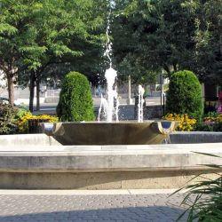 Gaglardi Square 11