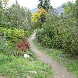 Peterson Creek Park 10