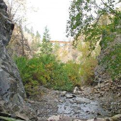 Peterson Creek Park 19
