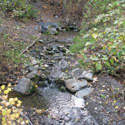 Peterson Creek Park 21