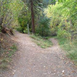 Peterson Creek Park 2