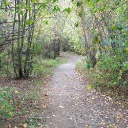 Peterson Creek Park 3