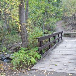 Peterson Creek Park 7
