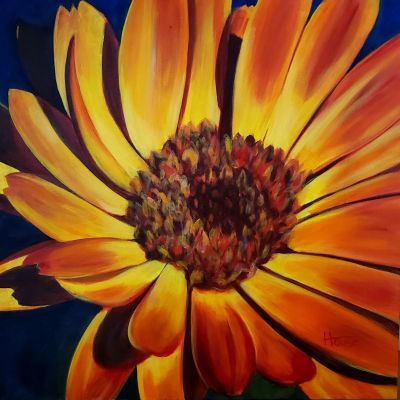 The Kamloops Arts Council presents two exhibitions at the Old Courthouse