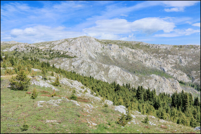Porcupine Creek to Lime Ridge