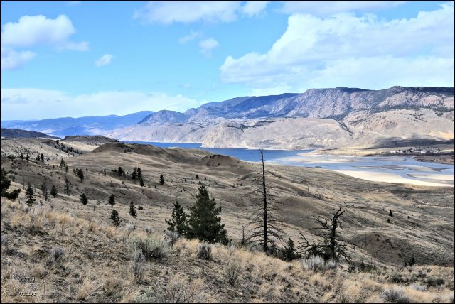 Hiking the Hills Above Kamloops Lake