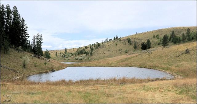 Deep Lake Trail
