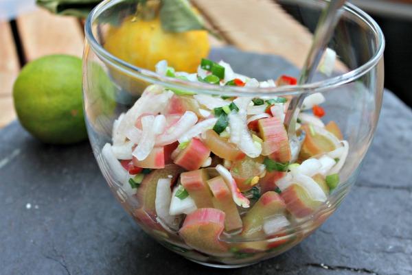 rabarber salsa med forårsløg