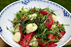 salat med rabarber,kartofler,dild og fennikel
