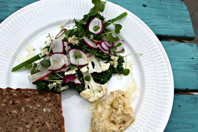 salat med mandel hummus samt brød