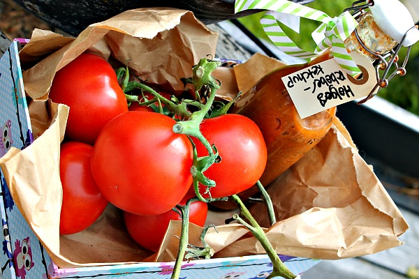 Holger's rabarber – tomatketchup