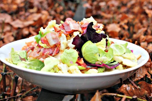 Salat af forskellige slags kål