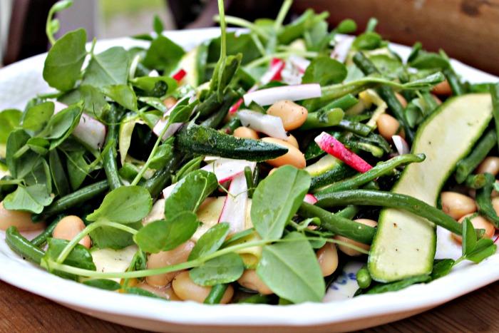Salat med hvide og grønne bønner, radiser, ærteskud samt courgetter