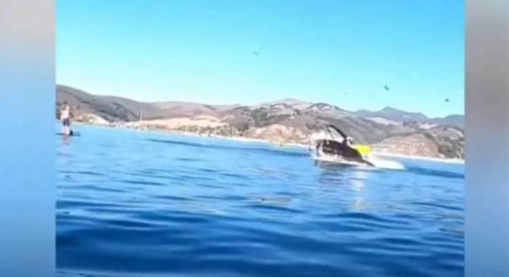 Στο στόμα φάλαινας 2 γυναίκες