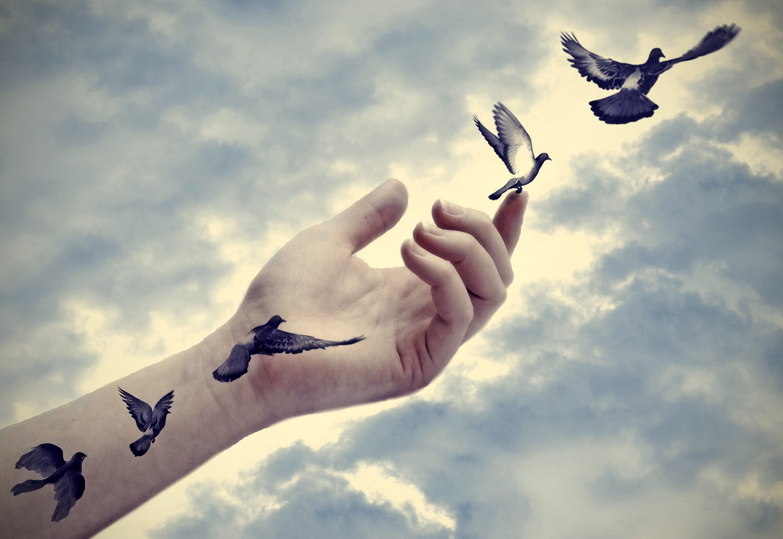 Seek liberation. Do not imprison yourself.