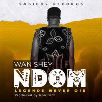 "Wan Shey Releases New Cultural Masterpiece ""Ndom"" Video!"