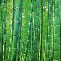 Ghaib : Kerinduan Seruling Bambu