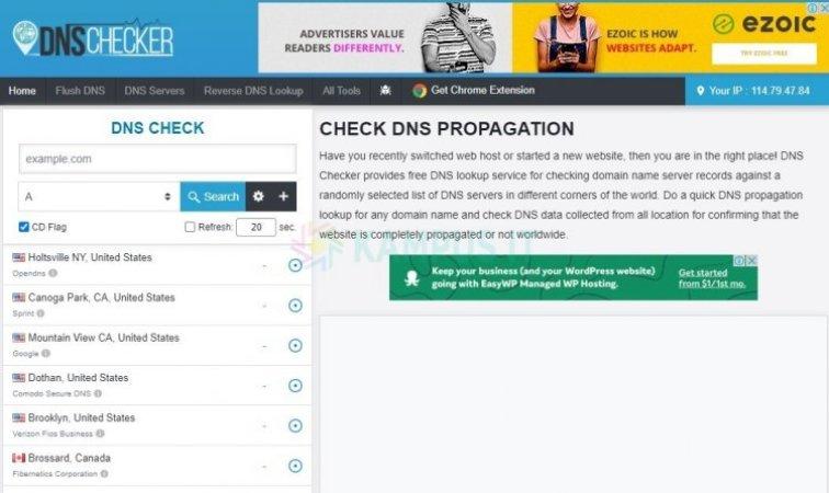 DNS Checker untuk Cek Propagansi DNS pada Domain Website