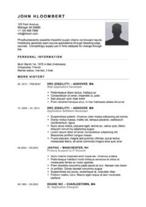 Contoh Curriculum Vitae Bahasa Inggris Lamaran Kerja Kampusunj Com