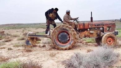 Photo of الفوج القتالي بكربلاء ينفذ عملية امنية للمناطق الصحراوية والارياف