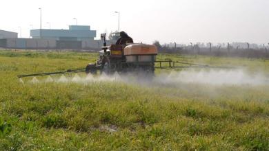Photo of زراعة كربلاء : حملة مجانية لمكافحة حشرة المن في حقول الحنطة في كربلاء