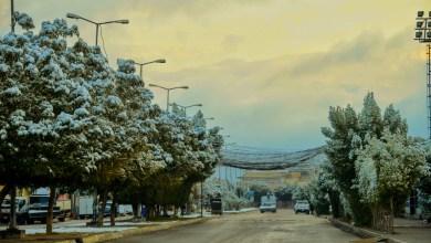 Photo of بالصور: هطول الثلوج لاول مرة في كربلاء والشوارع تلبس الحلة البيضاء