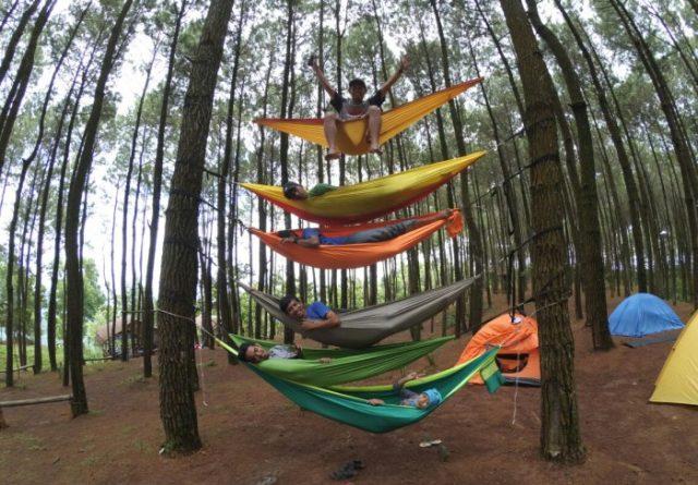 Meriahnya Liburan di Hutan Pinus Imogiri