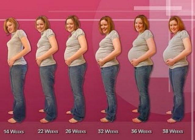 usia hamil 7 bulan