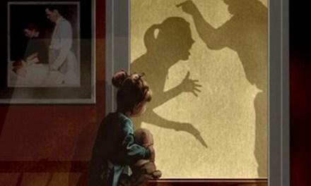 Заштитени ли се доволно жртвите од семејно насилство?