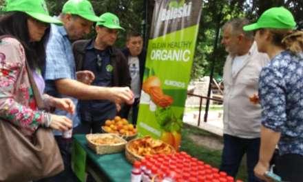 Со Фестивал на локална храна против рудници во Валандово