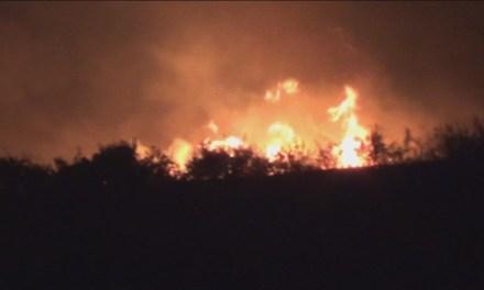 Локализиран пожарот кај Чалакли, изгореа над 200 хектари нискостеблеста шума