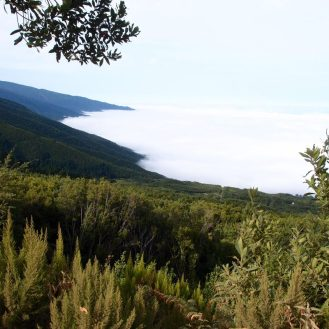 Ostseite La Palma