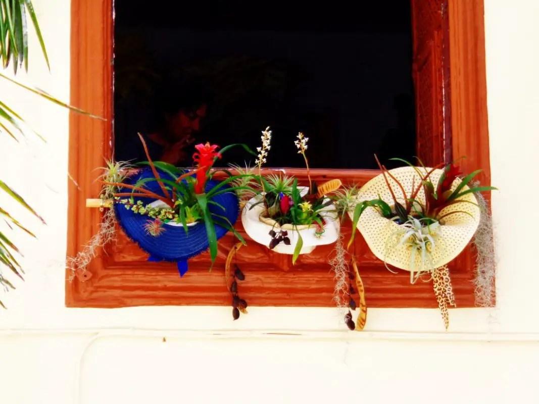 Blumenampel - Sombrero