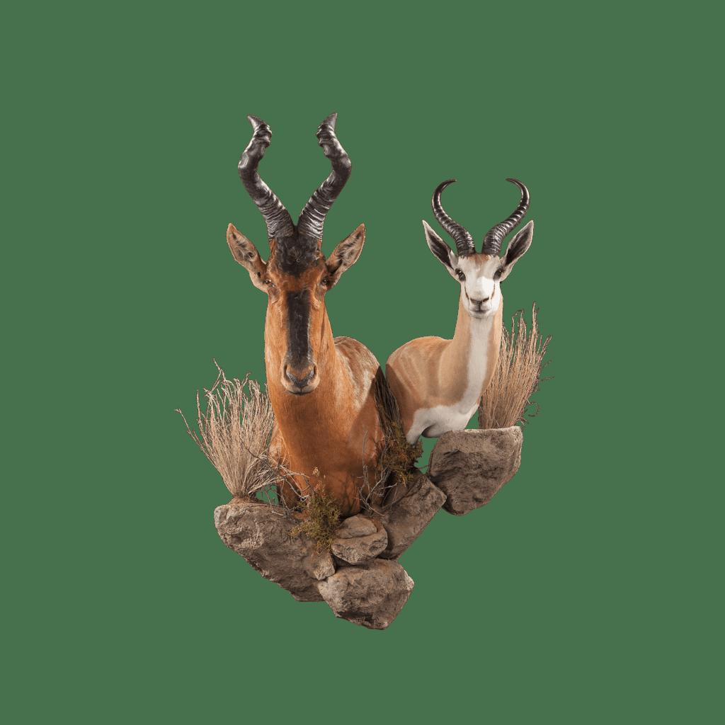 hartebeest wall pedestal
