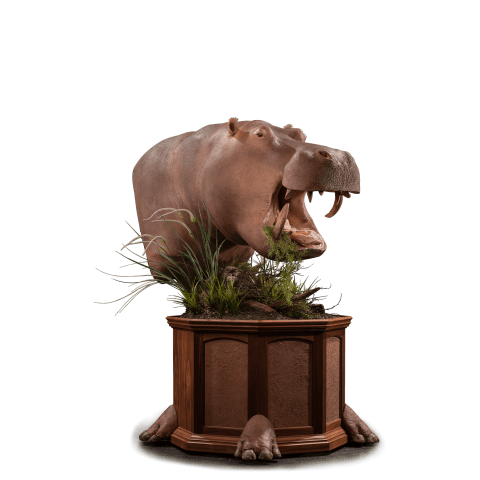 hippo pedestal mount