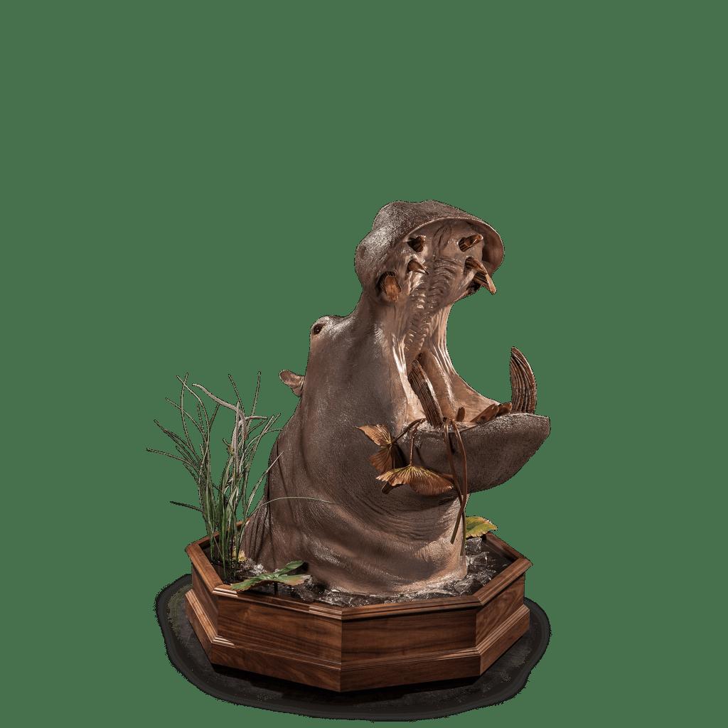 hippo open mouth replica taxidermy