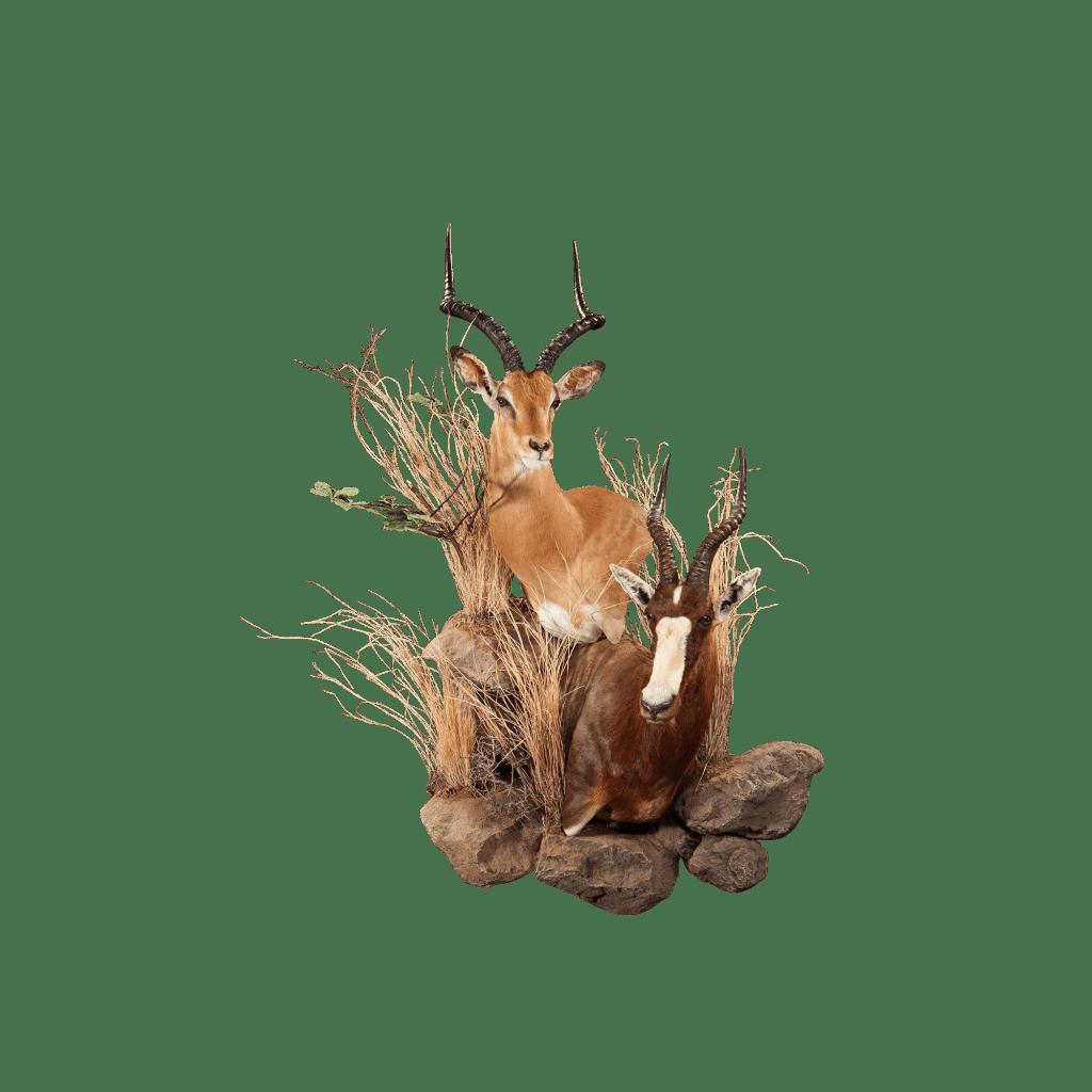 impala and blesbok wall pedestal