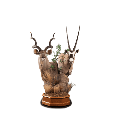 kudu and gemsbok pedestal
