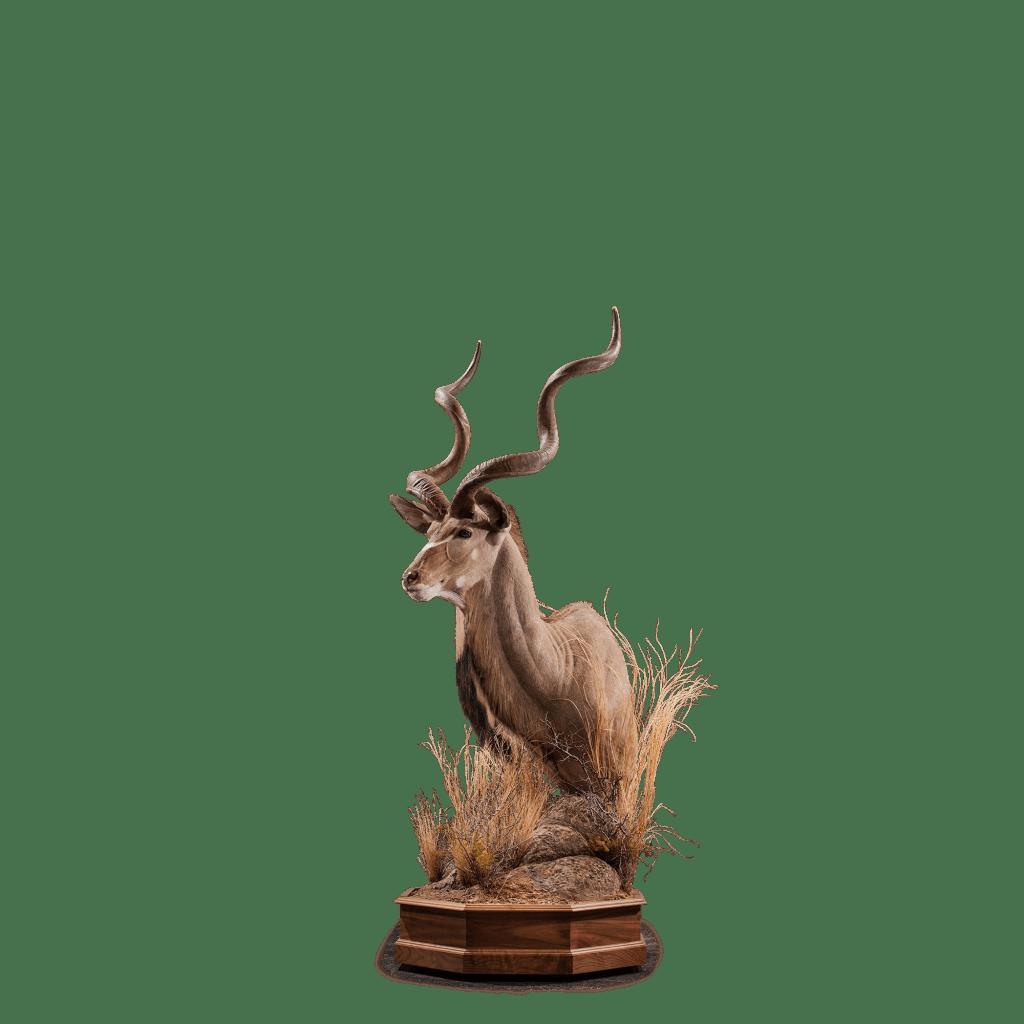 kudu pedestal mount