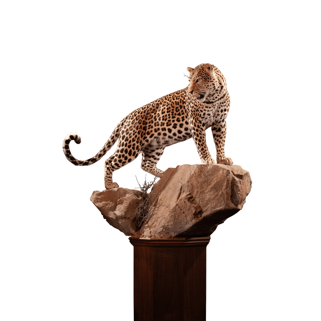 leopard replica on a rock