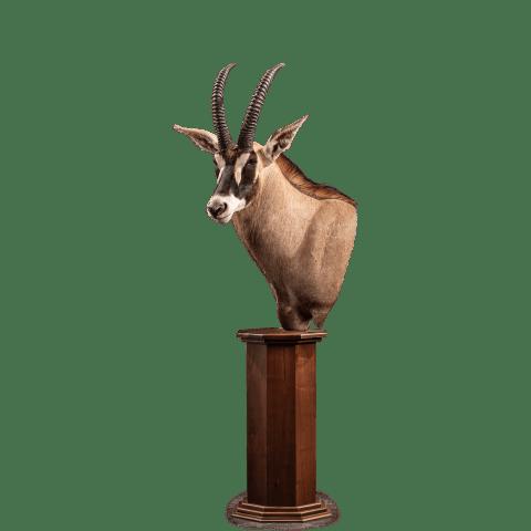 roan pedestal